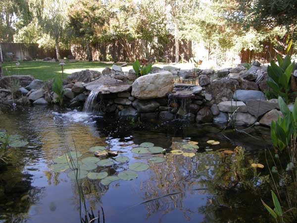 Water Features by Rick Martens